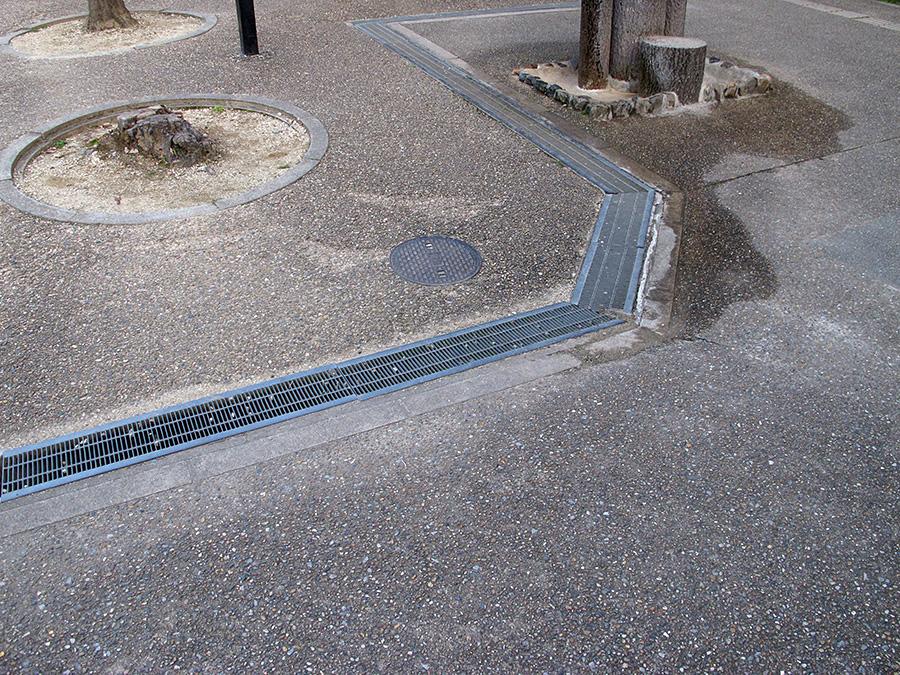 大仏池, Shibatsujicho, Nara, Japan