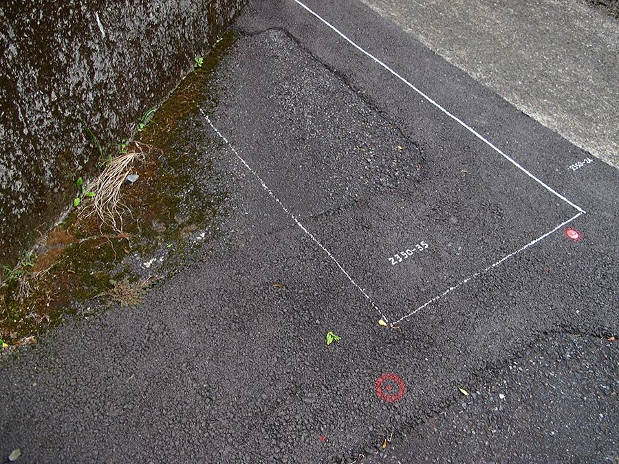 Miyanoura, Yakushima, Kumage, Kagoshima, Japan